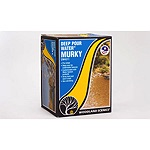 WS4511 - HO DEEP POUR WATER MURKY